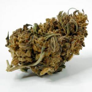 Crazy Cherry Cogollos de CBD. Cannabis 100% Legal