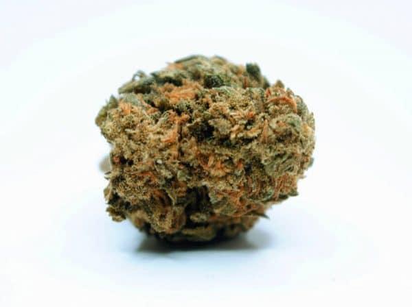 Gelato marihuana legal 2